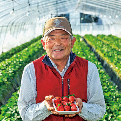 株式会社新日本農業