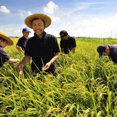 ホゲホゲホゲホゲ米農家